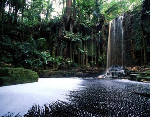 Suriname-Waterfall