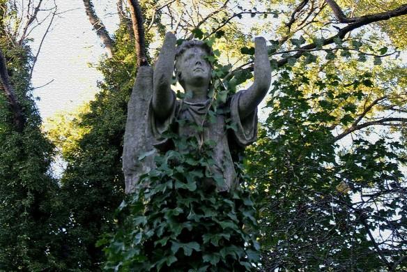 Estatua ángel cubierto de hiedra_Nunhead Cem_Fitzroy Chev