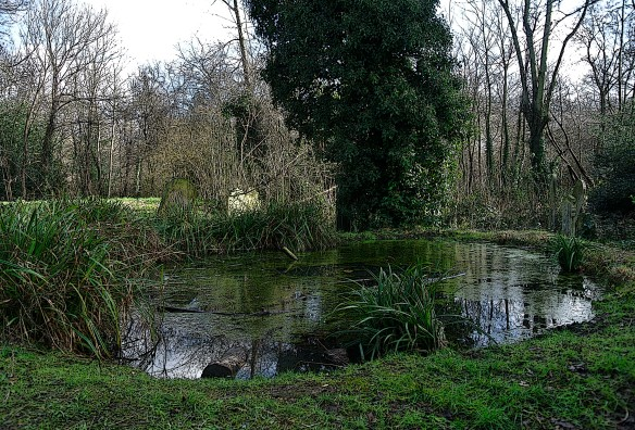 Tower Hamlets Pond, The Ivy Castle